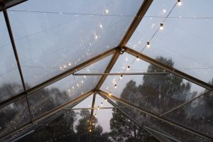 Festoon Light -